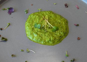 Making Micro Greens More Durable- Basic Recipes