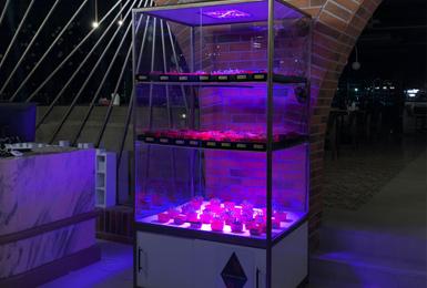 Gümüşsuyu Restaurant Smart Farming Booth